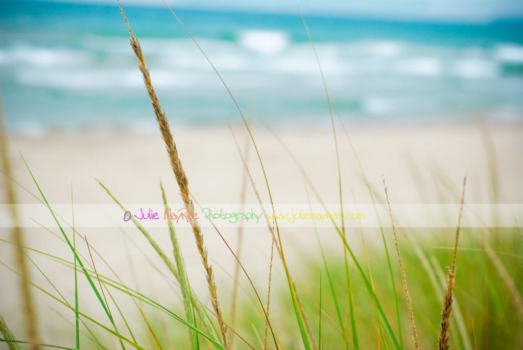 DSC_0484-Editforblog