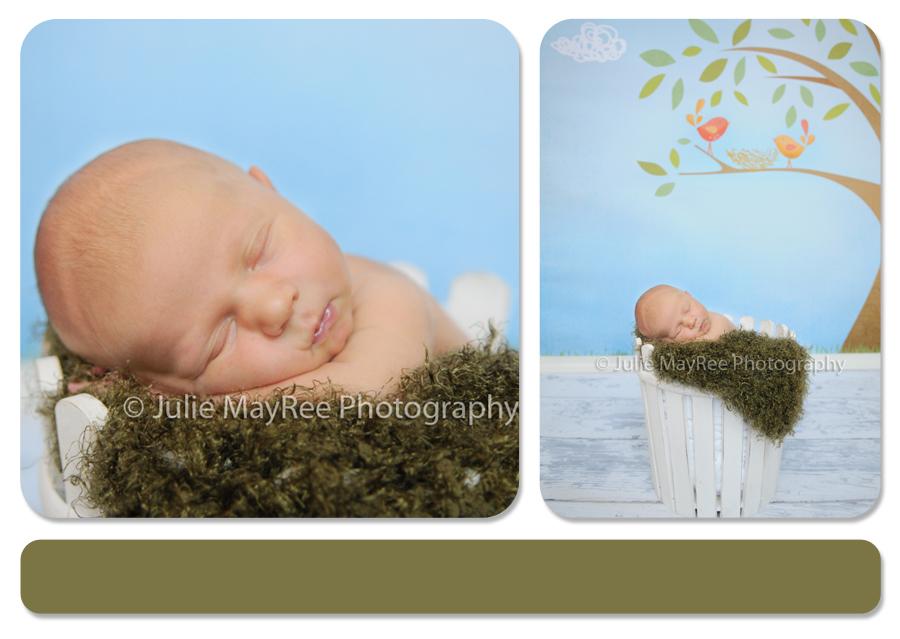 JulieMayReeBlog5